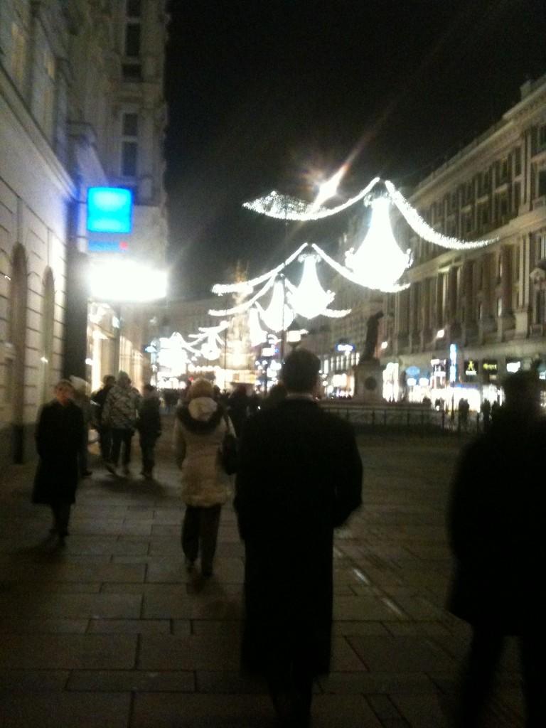 Vienna at Night- Luci Gabel