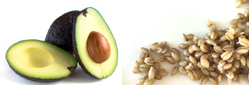 Which is Worse: Fat or Carbohydrate?