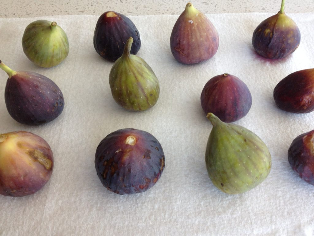 Drying Figs- LuciFit
