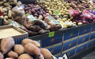 The Great Potato Debate